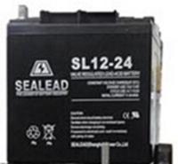 简阳SEALEAD西力达蓄电池SL12-24ups电源延时1小时