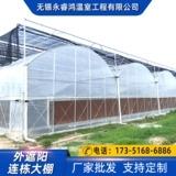 温室大棚 反季蔬菜大棚 规格齐全