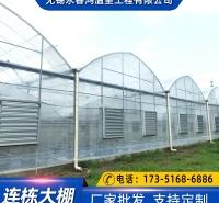蔬菜大棚 葡萄温室 建造基地