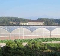 草莓大棚厂家 西瓜温室 按需定制