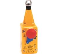 440P-ASLB02D5限位开关Allen-Bradley罗克韦尔