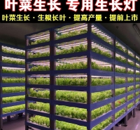 苍南植物生长灯厂家直销全光谱植物生长灯 温室植物生长灯 LED植物灯