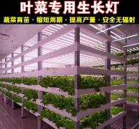 厦门植物生长灯厂家直销全光谱植物生长灯 温室植物生长灯 LED植物灯