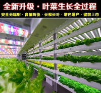 江苏植物生长灯厂家直销全光谱植物生长灯 温室植物生长灯 LED植物灯