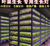 无锡植物生长灯厂家直销全光谱植物生长灯 温室植物生长灯 LED植物灯