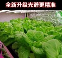 泰州植物生长灯厂家直销全光谱植物生长灯 温室植物生长灯 LED植物灯